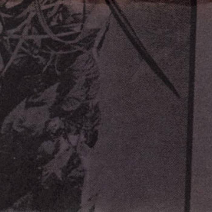 The Phantom Harp cover art
